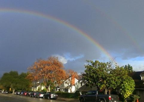 rainbowF